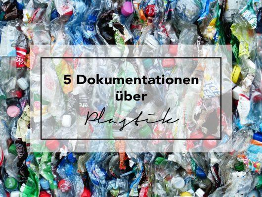 Dokumentation Plastik