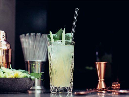 HALM-nachhaltiger-Trinkhalm-Glas
