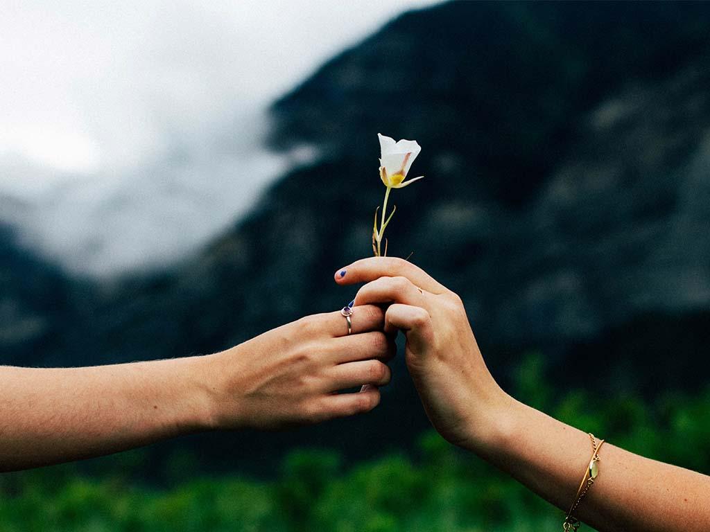 Nachhaltigkeit schenken Ideen Blogger
