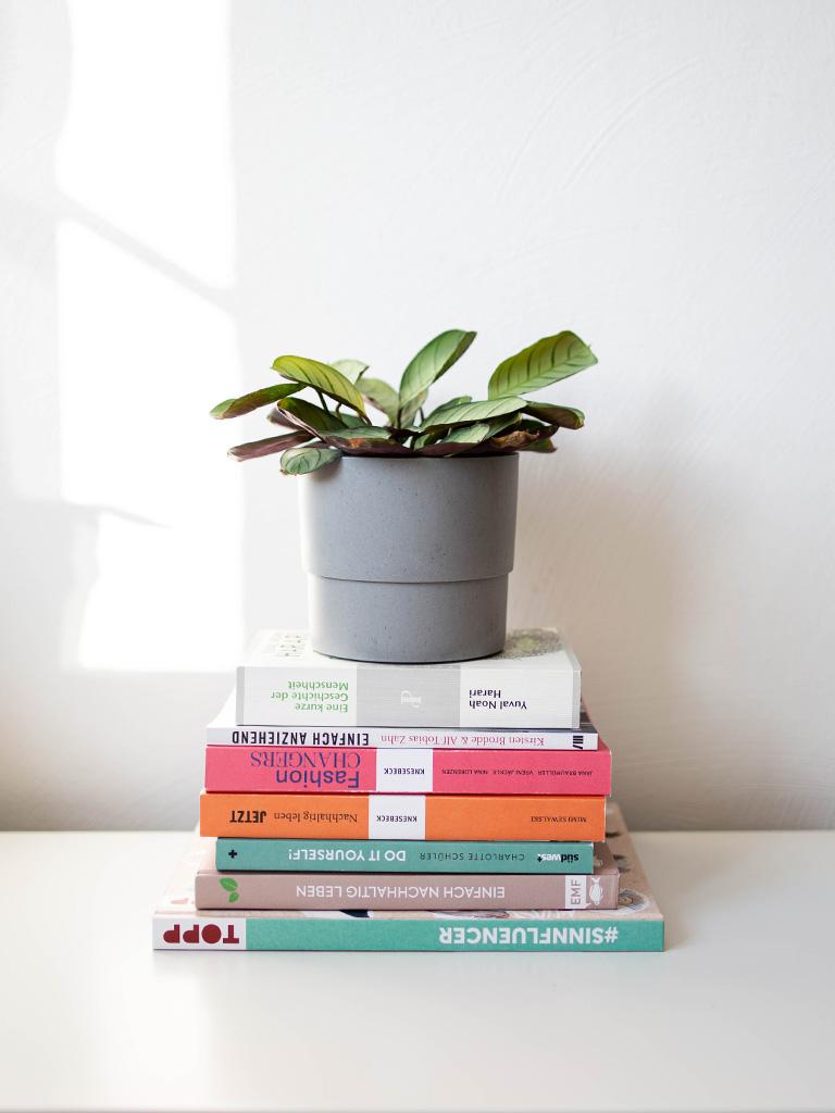 Das sind die besten Bücher über Nachhaltigkeit, Zero Waste und faire Mode